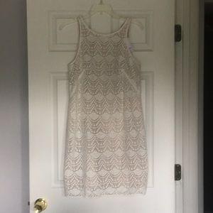 Size 2 Ann Taylor Loft dress